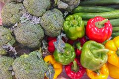 Various Type of Vegetables Stock Photo