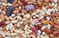 Various types of beans mottled Stock Photos