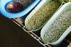 Various types of beans Phaseolus Vulgaris sorted in steel and plastic bowls and cans in wooden crate. Image taken in evening sunshine royalty free stock photo