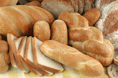 Various types of bread. Arrangement of various types of bread Royalty Free Stock Images