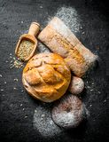 Various types of bread with grain. On black rustic background royalty free stock photo