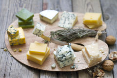 Various types of cheese on abstract vintage paint palette Stock Image