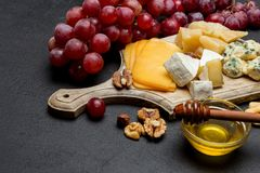 Various types of cheese - brie, camembert, roquefort and cheddar royalty free stock photos