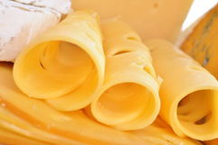 Various types of cheese composition isolated Royalty Free Stock Image