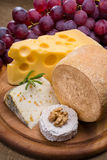 Various types of cheese and grape Royalty Free Stock Photo