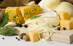 Various types of cheese with spice Royalty Free Stock Images