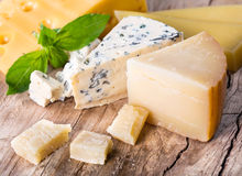Various types cheese Royalty Free Stock Images