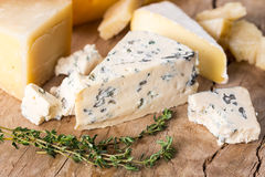 Various types cheese Royalty Free Stock Photos