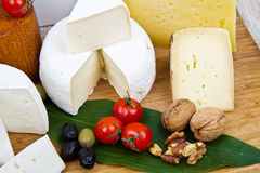 Various types of cheese on wood Stock Image