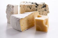 Various types of cheeses. Various types of cheeses on a white background stock images