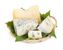 Various types of cheeses Royalty Free Stock Photo