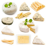 Various types of cheeses Stock Photography