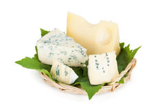 Various types of cheeses Stock Images
