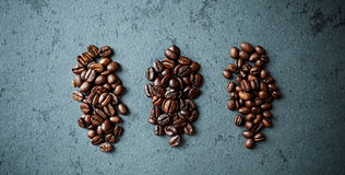 Various types of coffee beans Stock Image