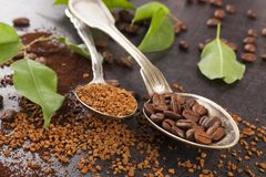 Various types of coffee. Various types of coffee and coffea plant leaves stock photo