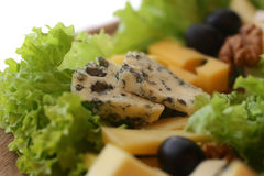 Various types of gourmet cheese Stock Images