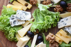 Various types of gourmet cheese Royalty Free Stock Image