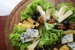 Various types of gourmet cheese Stock Image