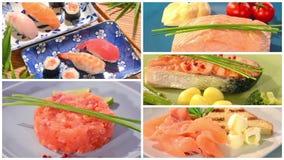Various types of Irish salmon. Composition stock footage