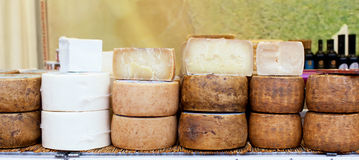 Various types of Italian cheeses Royalty Free Stock Photos