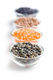 Various types of lenses legumes Stock Images