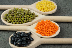 Various types of lentils and black beans on wooden spoons. Royalty Free Stock Photography