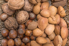 Various types of nuts. Walnuts, Almonds, Brazil nuts, hazel nuts royalty free stock images