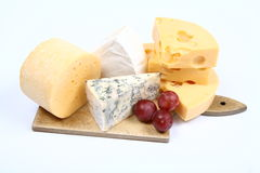 Free Various Types Of Cheese Stock Image - 14088201