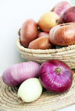 Various types of onions Royalty Free Stock Photo