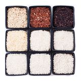 Various types of rice. In black bowls isolated on white Royalty Free Stock Photos