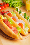 Various types of sandwiches Stock Image