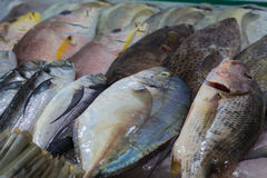 Various types of sea fish on the market, Vietnam stock photo
