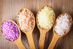 Various types of seasalt Royalty Free Stock Photography