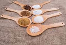 Various Types Of Sugar XI Stock Photos