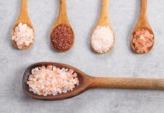 Different varieties of table salt. Royalty Free Stock Images