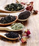 Various types of tea. In a wooden spoon royalty free stock photos