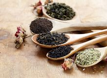 Various types of tea. In a wooden spoon stock photo
