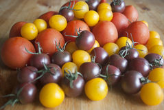 Various types of tomatoes on wooden background Royalty Free Stock Photo