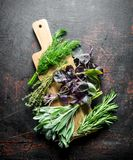 Various types of useful herbs on a wooden cutting Board. On dark rustic background stock photography
