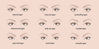 Various types of  woman eyes. Set of vector eyes shapes.  Set of illustrations with captions Royalty Free Stock Photo