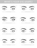 Various types of woman eyes, vector set Stock Photos