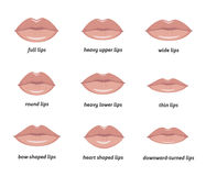 Various types of  woman lips. Set of vector lips shapes. Set of illustrations with captions Royalty Free Stock Photography