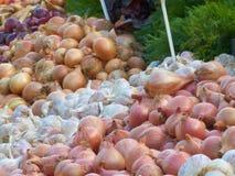 Various varieties of onion and garlic at farmers' market Royalty Free Stock Photos