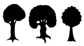 Various of vector tree silhouettes Stock Image