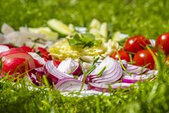Various vegetable on the plate stock image
