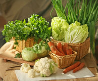 Various vegetables Royalty Free Stock Photos