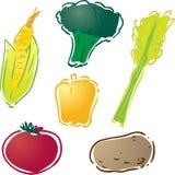 Various vegetables. Illustration : corn, bell pepper, celery, tomato, potato, brocolli Stock Image