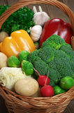 Various vegetables in basket Royalty Free Stock Photography