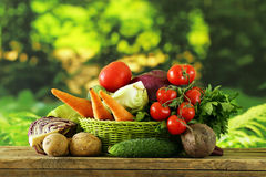 Various vegetables (carrots, potatoes, cabbage, tomatoes) Royalty Free Stock Photography
