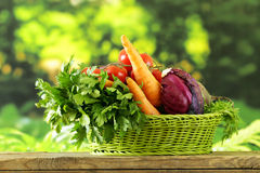 Various vegetables (carrots, potatoes, cabbage, tomatoes) Stock Photography